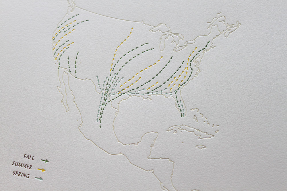 monarch-migration-1.jpg