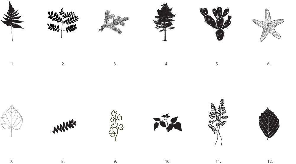 images-notecards-2.jpg