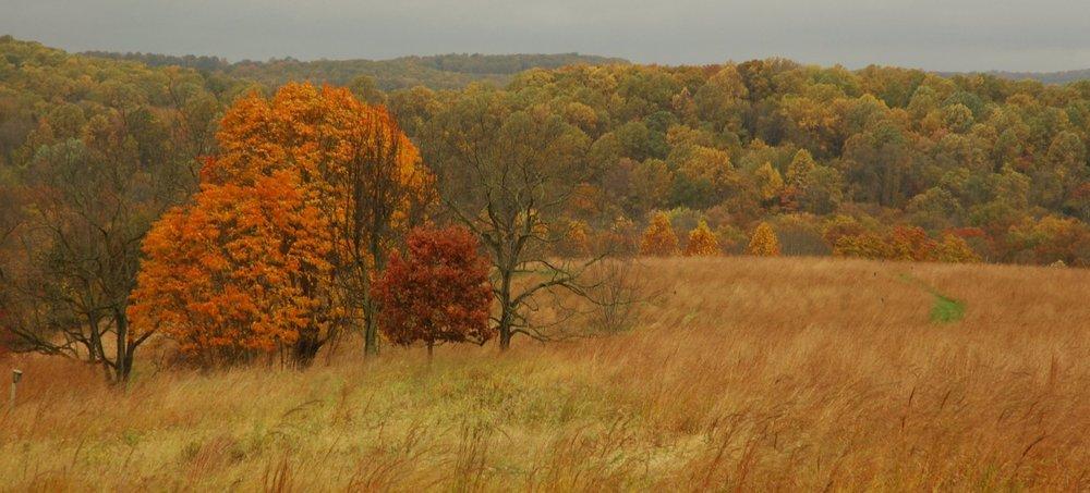 Photo credit: Natural Lands