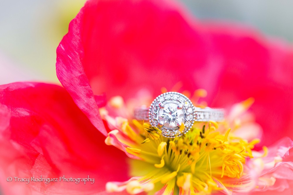 TracyRodriguezPhotography-Engagement-LowRes-90.jpg