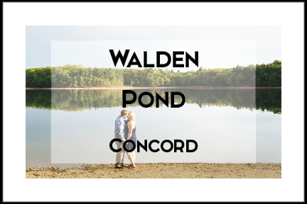 Walden Pond Engagement Session by Tracy Rodriguez Photography