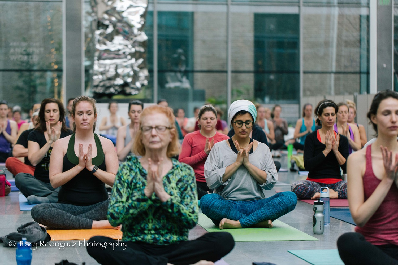 Namaste At The Mfa Sneak Peak Museum Of Fine Arts Yoga Series