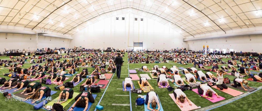 1,000 yogis filling the field last year!