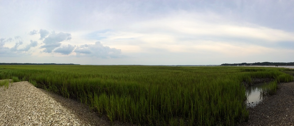 Tidal creek; South Carolina coast near Bluffton, SC