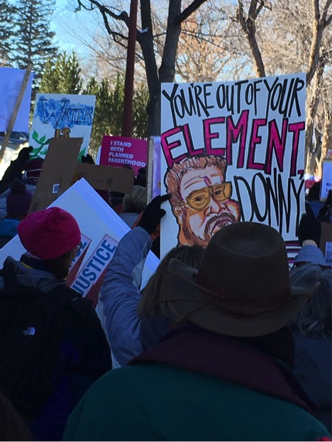 Protesters at the Women's March in Helena, Montana, January 21, 2017.
