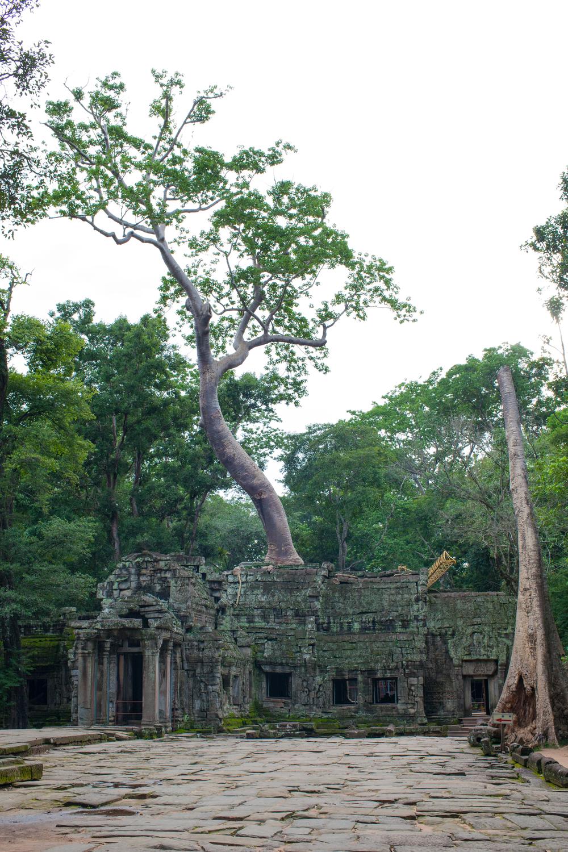 Ankor Wat Day2 203.jpg