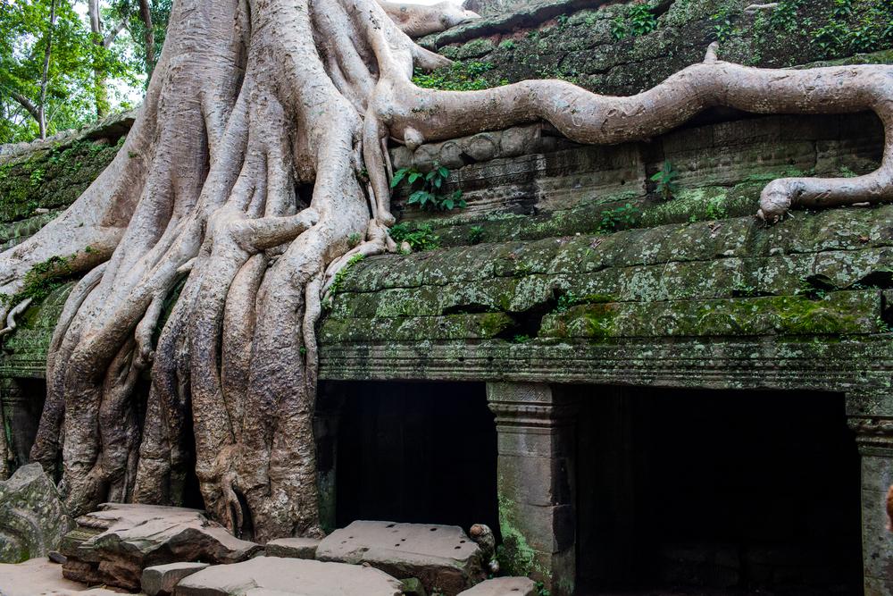 Ankor Wat Day2 180.jpg