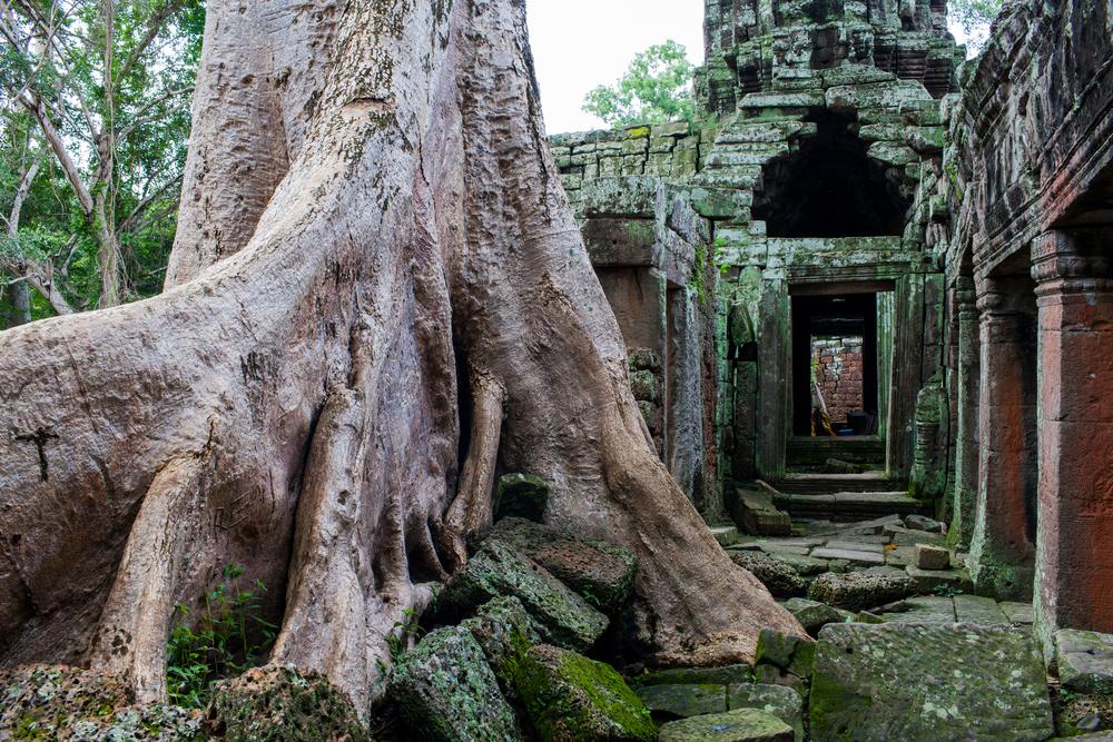 Ankor Wat Day2 042.jpg
