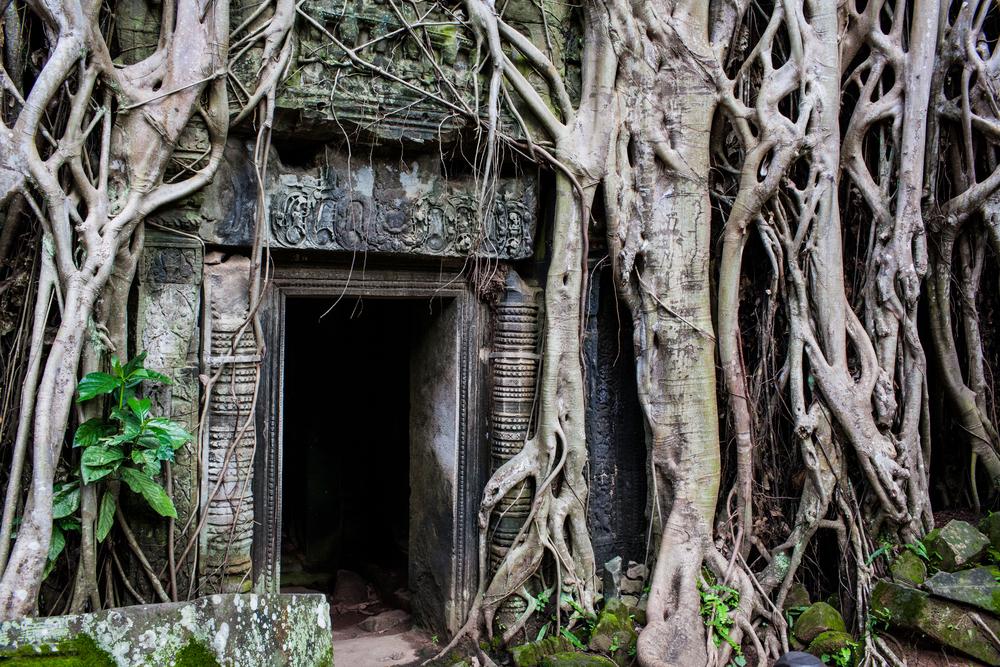 Ankor Wat Day2 187.jpg