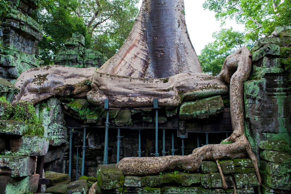 Ankor Wat Day2 191.jpg