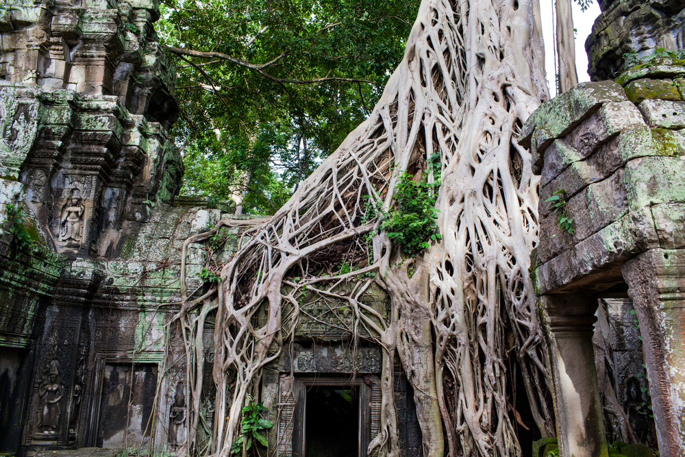Ankor Wat Day2 186.jpg