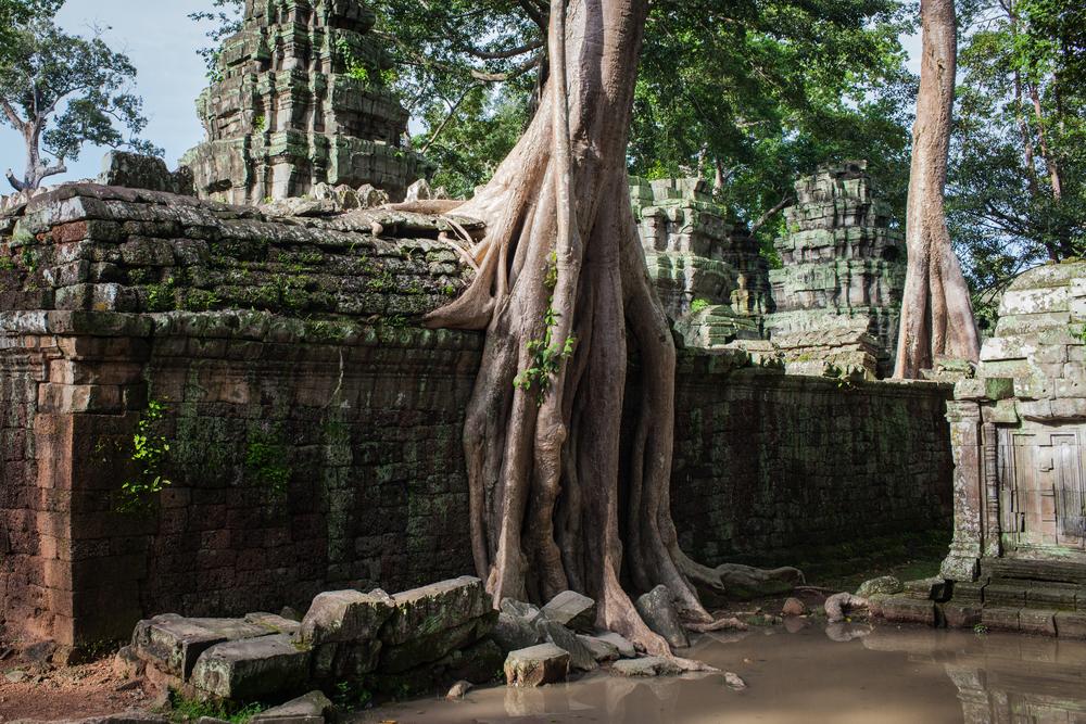 Ankor Wat Day2 175.jpg