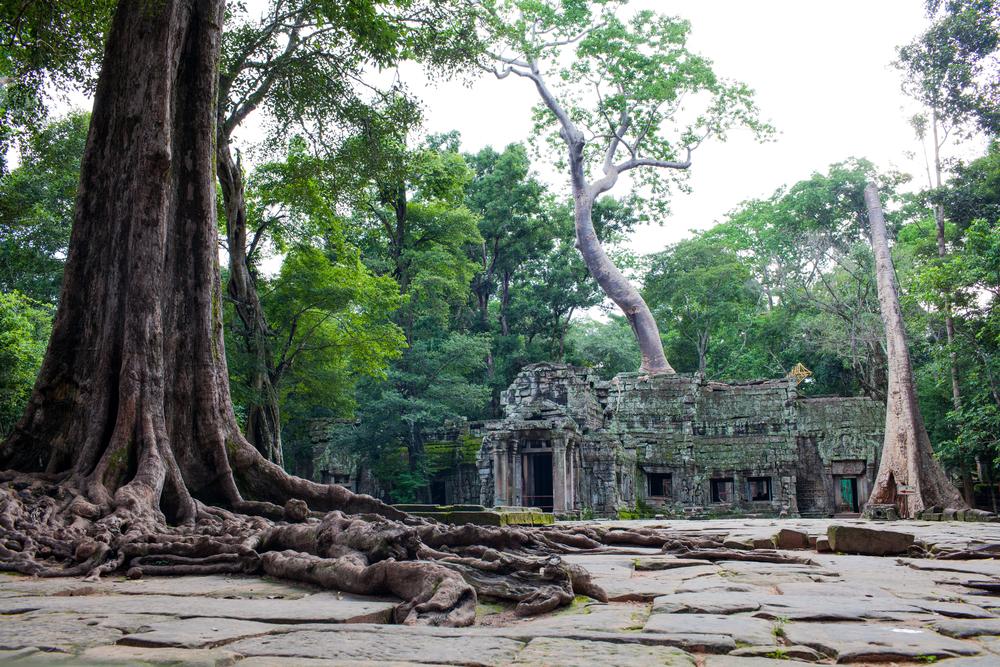 Ankor Wat Day2 205.jpg