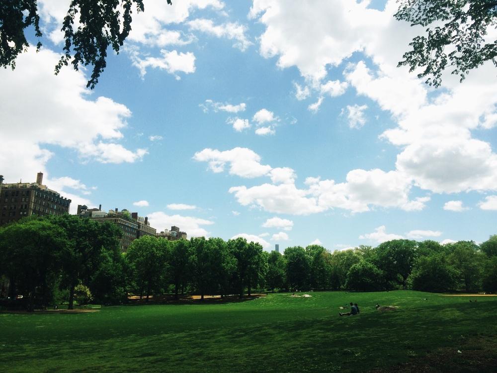 New York. Central Park.