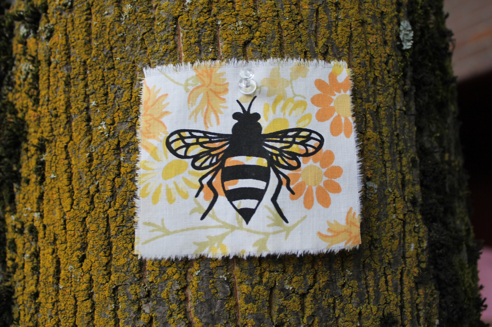Bee on a tree in downtown Portland, Oregon