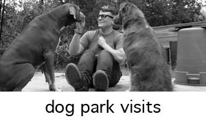 we know you want the best for your dog, even when you are busy. let us take those pups to the park for you.