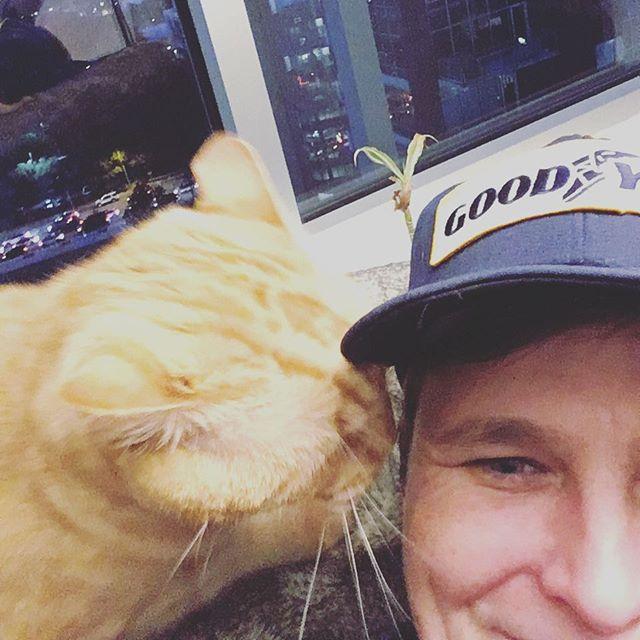 Griffin is telling me all the secrets again. #eastsidedogwalkers #austintexas #condocat #topsecret #psssst #kittiesofinstagram #goodyear #texasisthereason