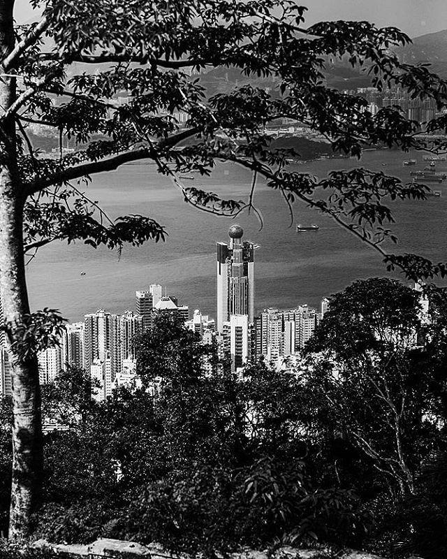 Peekaboo 👀  #hongkong #china #PierceTravels #asia #cityscape