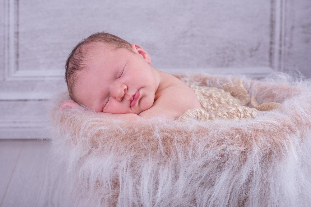 Baby Webb-22.jpg