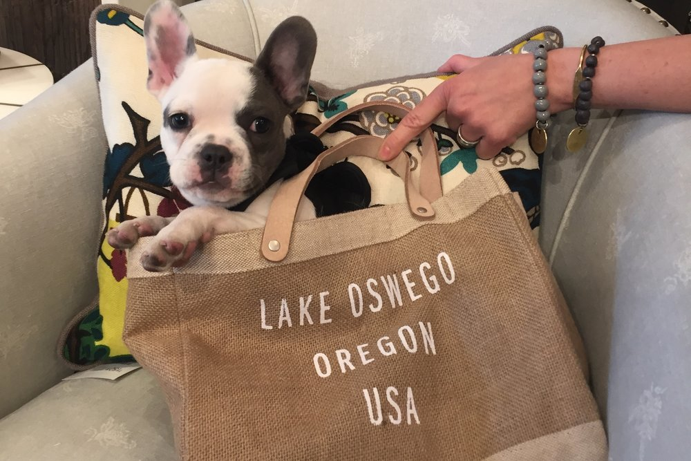 NEW LAKE OSWGO BAG
