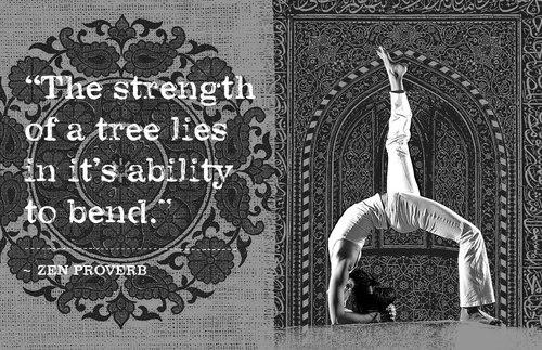 'La FORTALEZA de un árbol se encuentra en su habilidad para doblarse' — Proverbio Zen