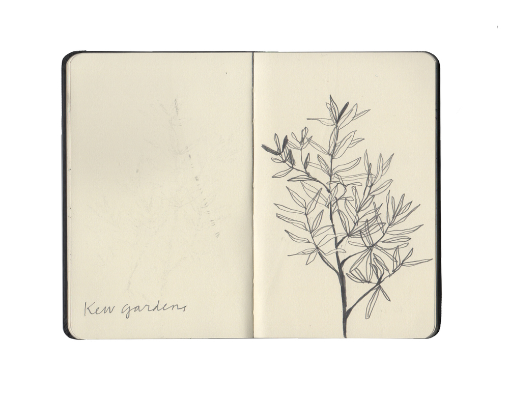 kew sketchbook 1.jpg