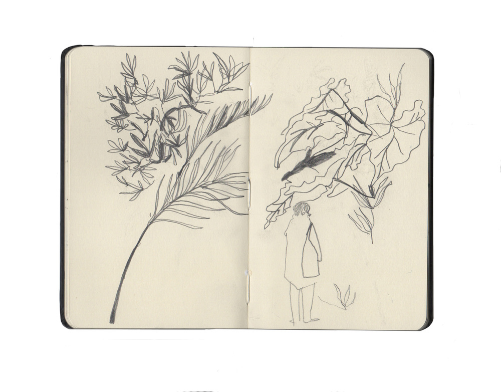 kew sketchbook 3.jpg
