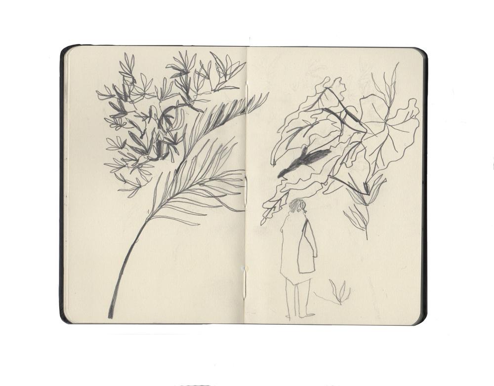 kew sketchbook 3.jpg