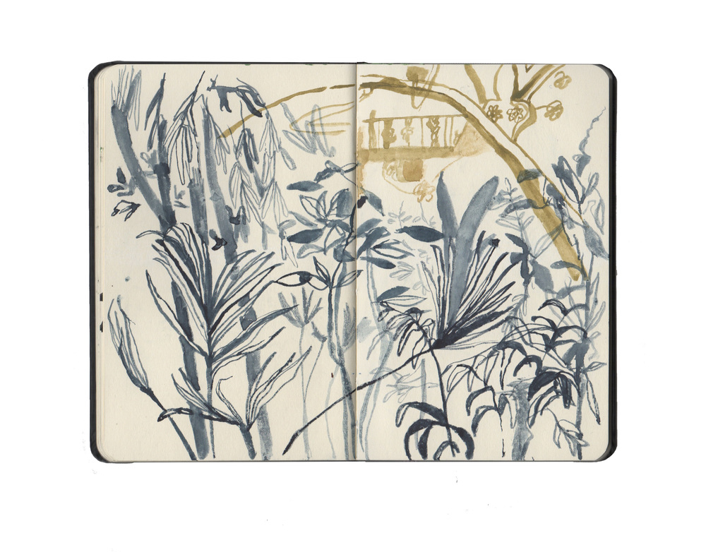 kew sketchbook 6.jpg