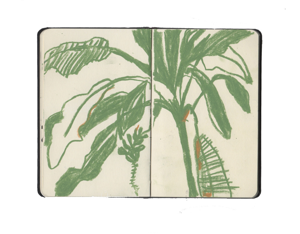 kew sketchbook 8.jpg