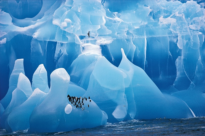 Ice berg off the South Sandwich Island in Antarctica photographed by Cherry Alexander/NMH.