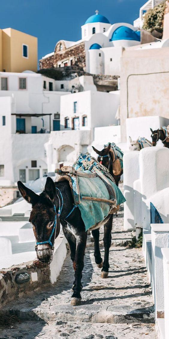Santorini 3.jpg
