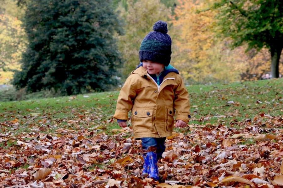 Walking leaves.jpg