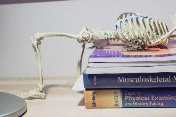 bones med school.png
