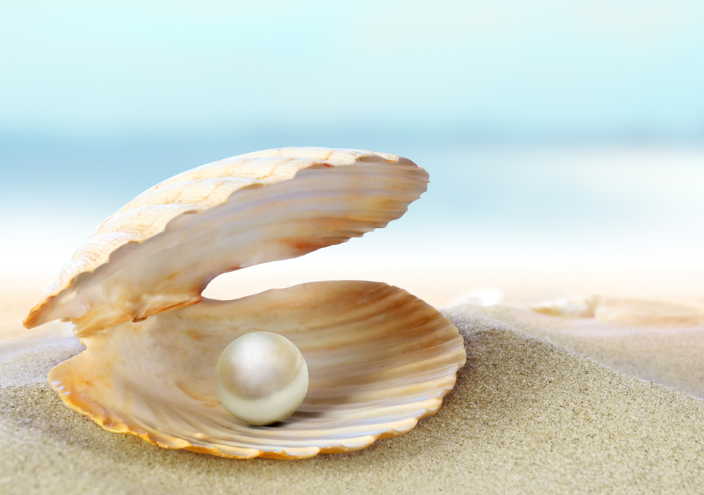 Pearls of Wisdom TTC Fertility Infertility