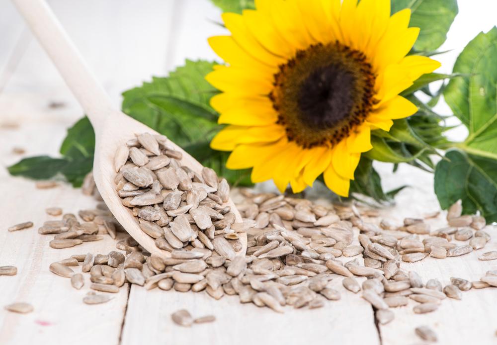 Vitamin E Fertility Food IVF TTC