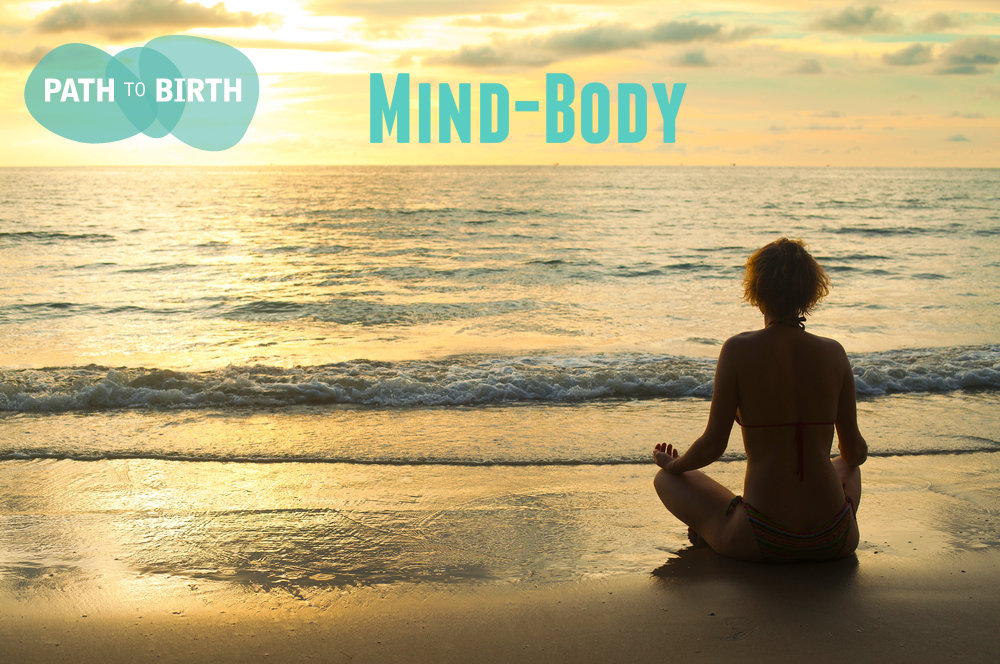 Mind body emotional support TTC infertility path to birth