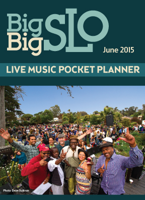 6-2015-PocketPlannerCover.jpg
