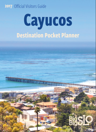 Cayucos-Planner-Cover-Draft.jpg