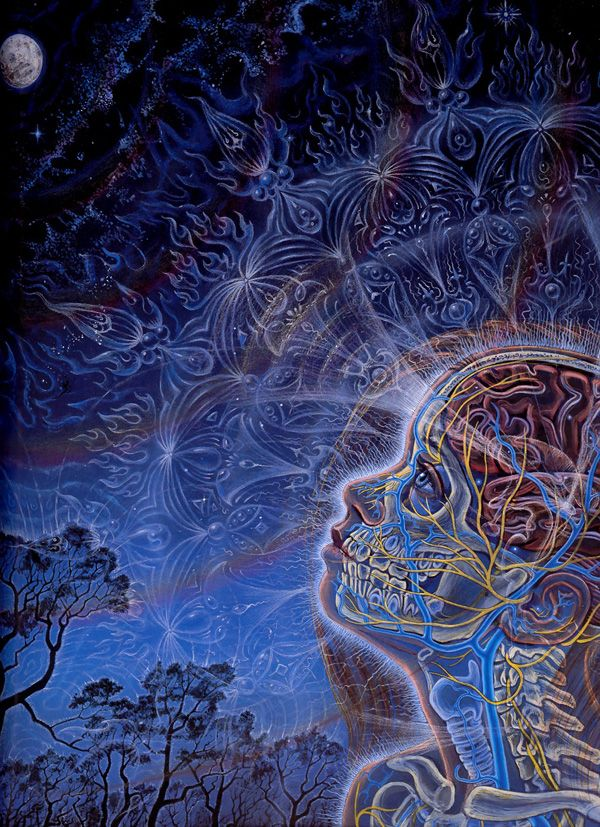 """ Wonder - Zena Gazing at the Moon ,"" Alex Grey, 1996, acrylic on paper, 16 x 20 inches"