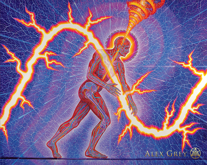 """Lightworker,"" Alex Grey, 2012, oil on linen, 114 x 90 in"