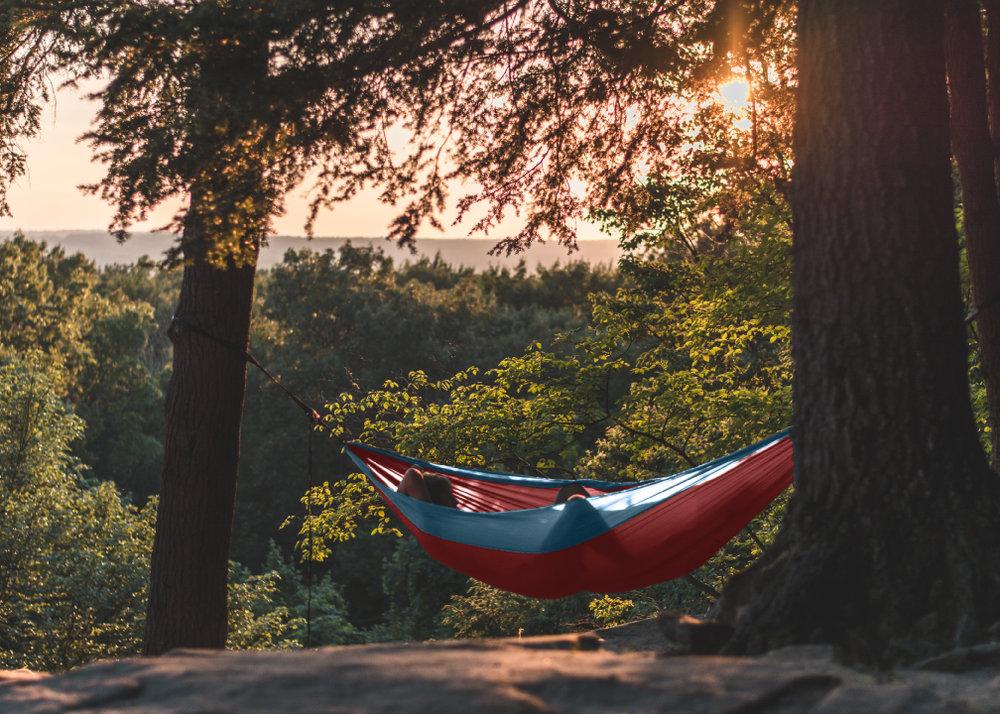 3.hammock.jpg
