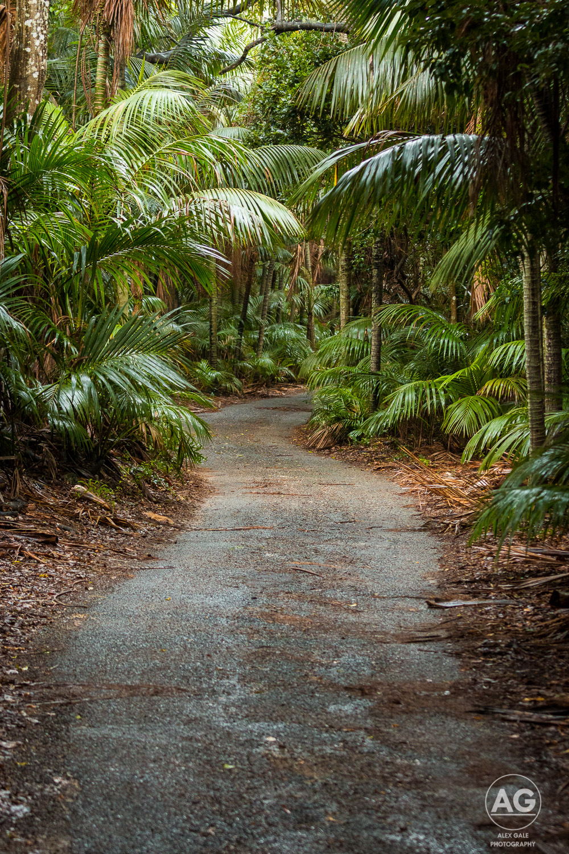 Lord Howe Island-22.jpg