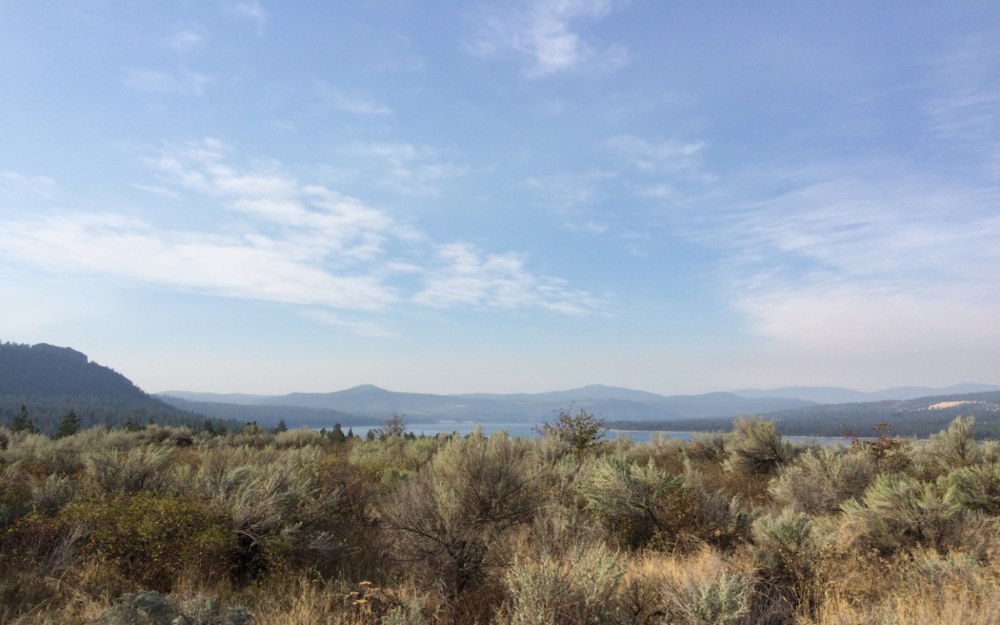 Looking into the Columbia River from Fruitland Vineyard.
