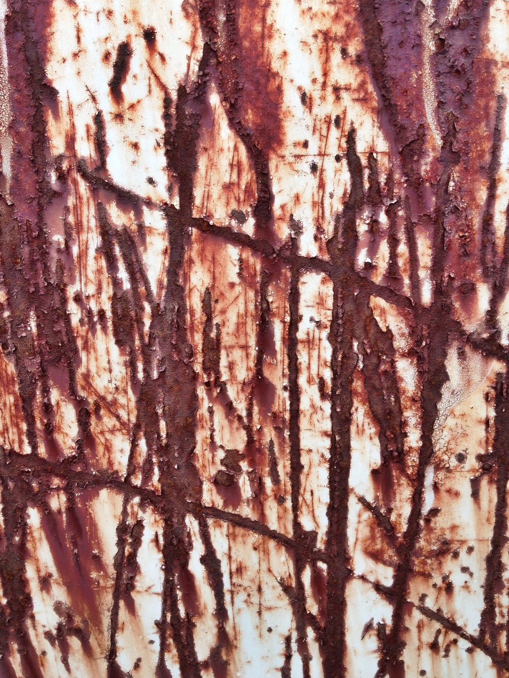 Rust Scratches, Madeline Young