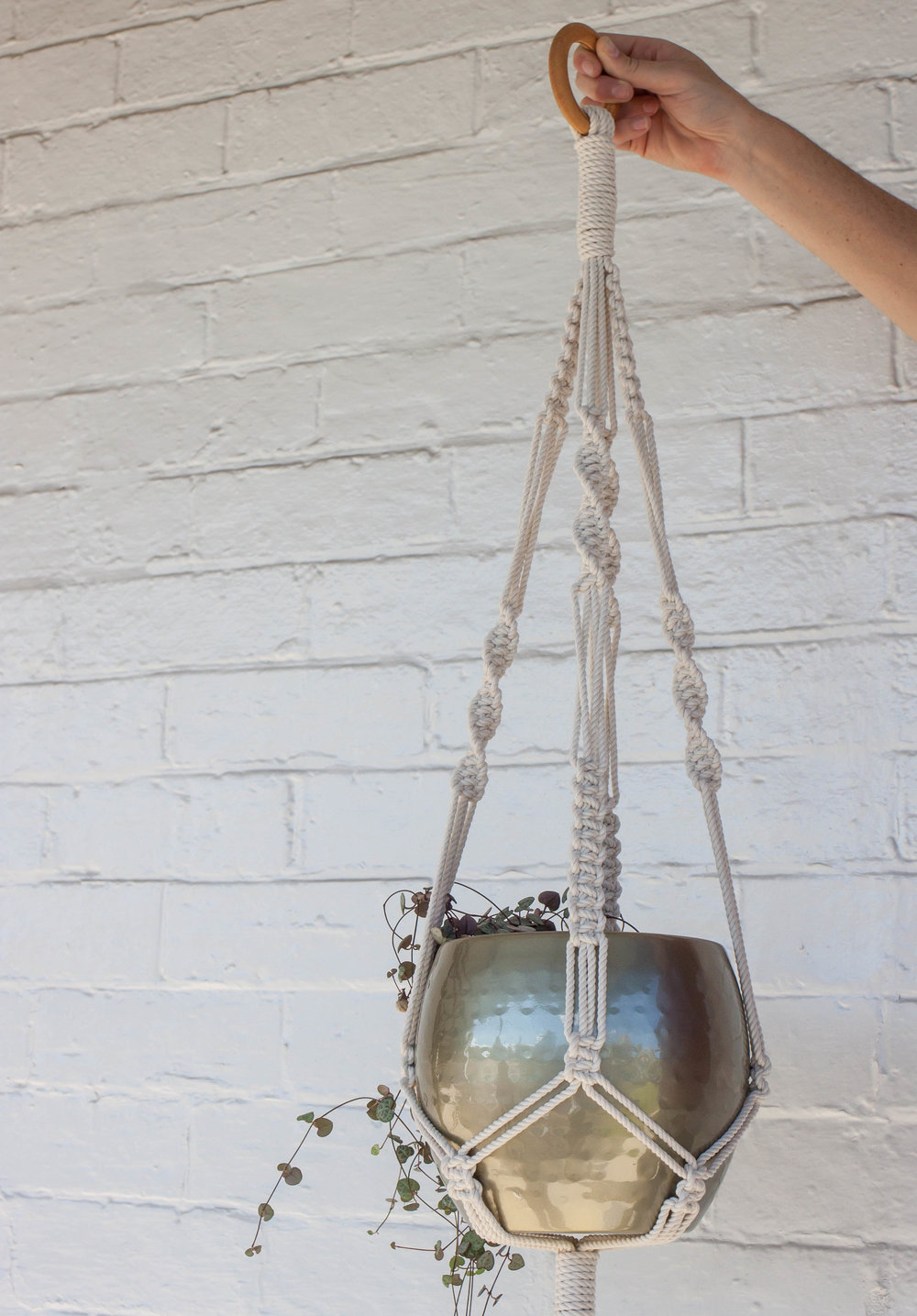 Macrame Planter Workshop with Madi Young