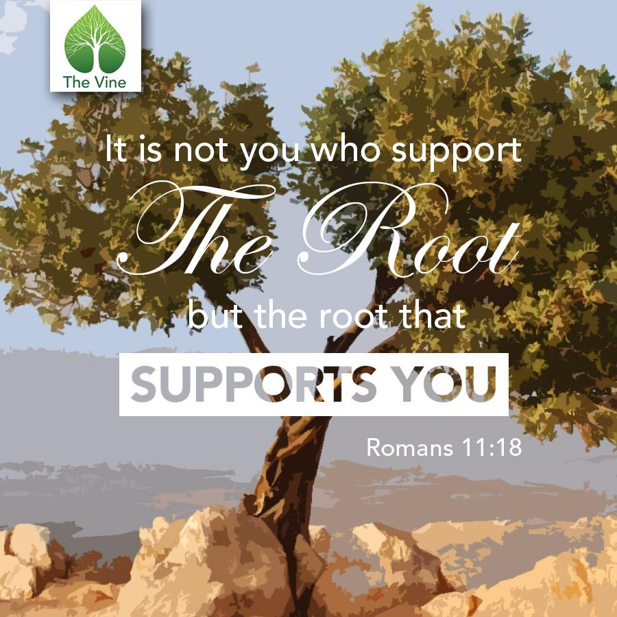 Romans11-18.jpg