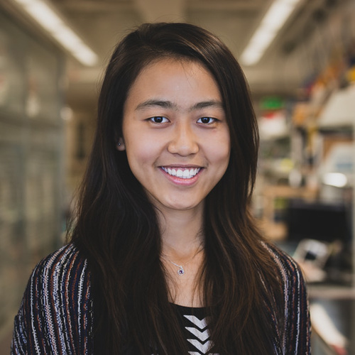Xinyuan 'Lisa' Zhang  (2012-2015) Medical student Stanford School of Medicine