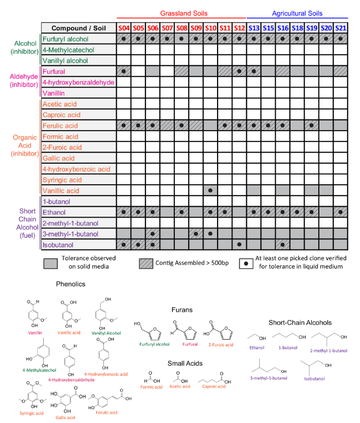 Identification of genes conferring tolerance to lignocellulose-derived inhibitors by functional selections in soil metagenomes. Forsberg KJ et al. Applied and Environmental Microbiology 2015