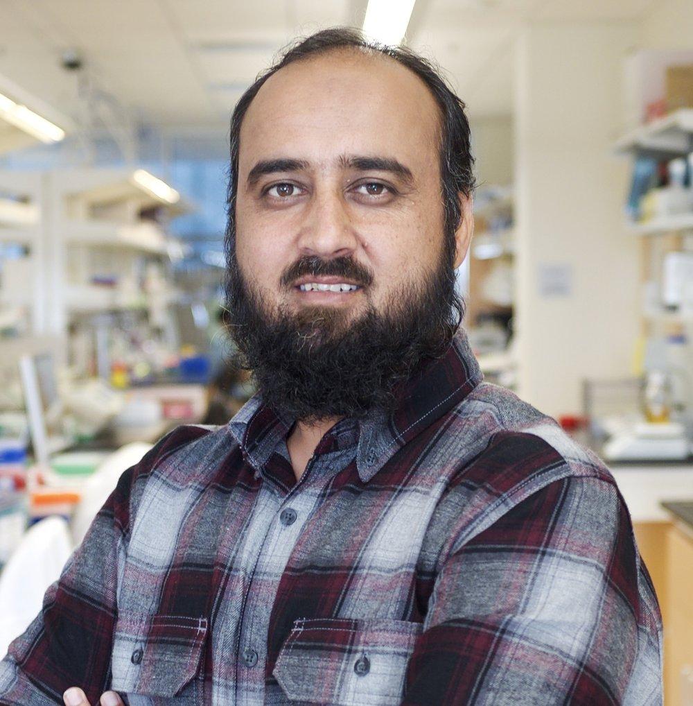 Muhammad Rafique muhammad.rafique[at]wustl.edu